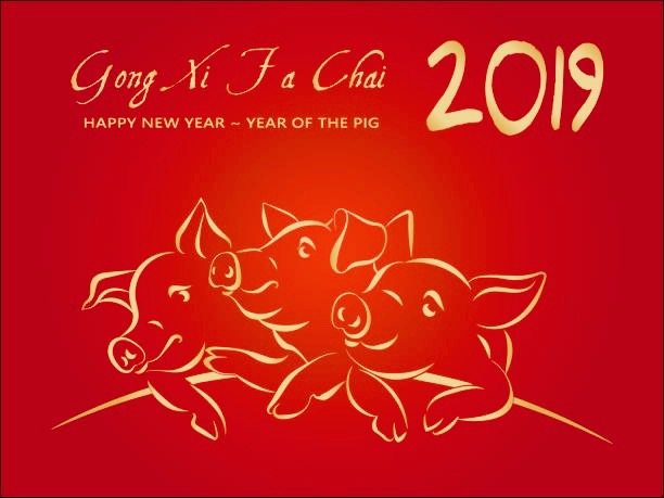 Kung Hei Fat Choi! (Year of the Pig).jpeg